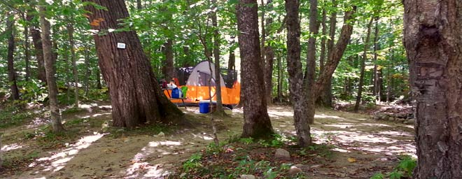 Tentsite at Crawford Notch Campground